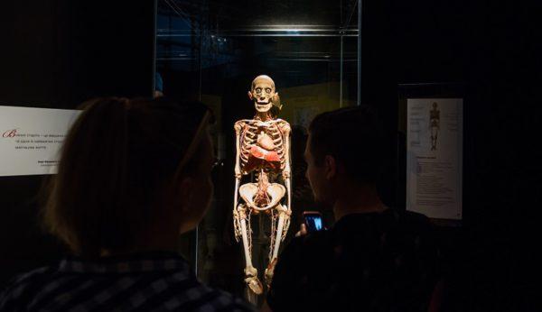 Выставку тел в Киеве продлили