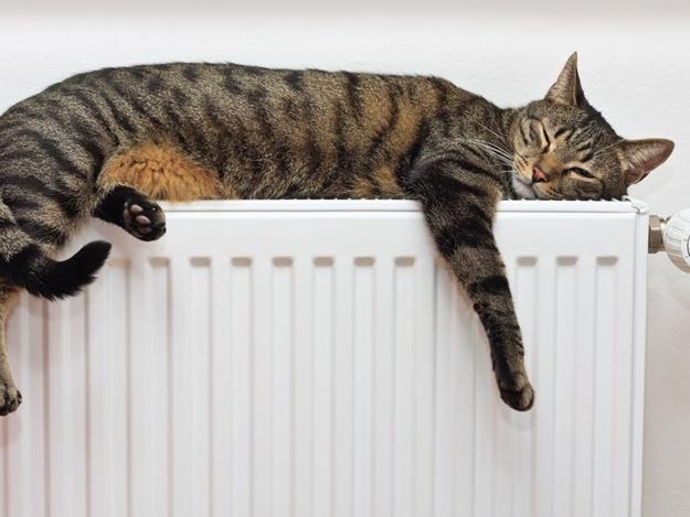 Киевляне будут меньше платить за отопление и горячую воду